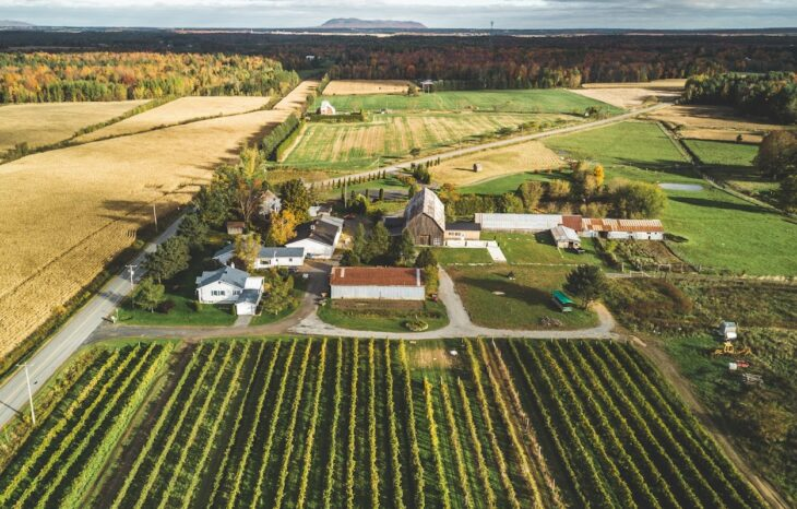 The CLD of Brome-Missisquoi is calling for candidates eligible for the 2021 grants supporting young farmers